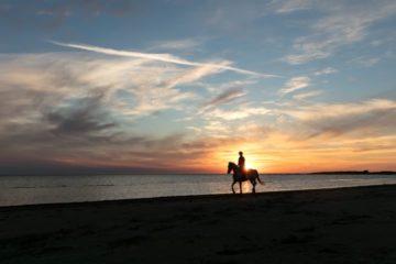L'équitation peut être un bon sport pour vous